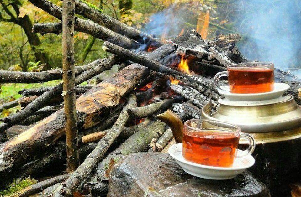 چای زعفرونی